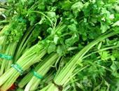 芹菜(白茎)