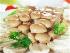 珍珠白蘑(干)