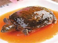 鲁式黄焖甲鱼