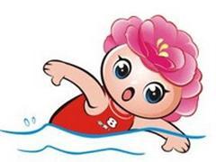 慢速游泳,自由式,中低强度