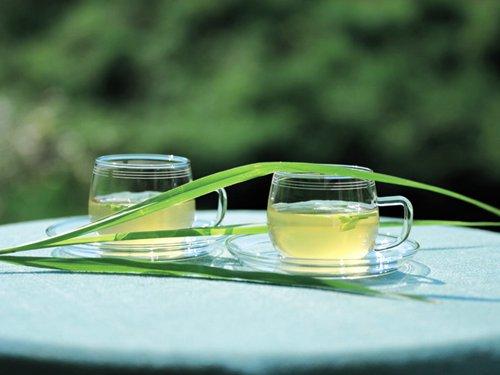 银屑病患者适合的饮用茶