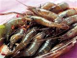 吃河虾能预防动脉硬化