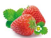 经常吃草莓可以养肝明目