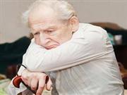 可以预防老年痴呆的食物有哪些?